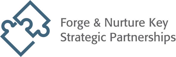 Forge & Nurture Key Strategic Partnerships