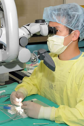 Research in the microsurgery lab