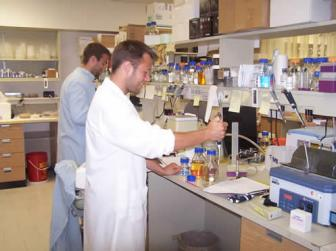 Lab Technicians at work